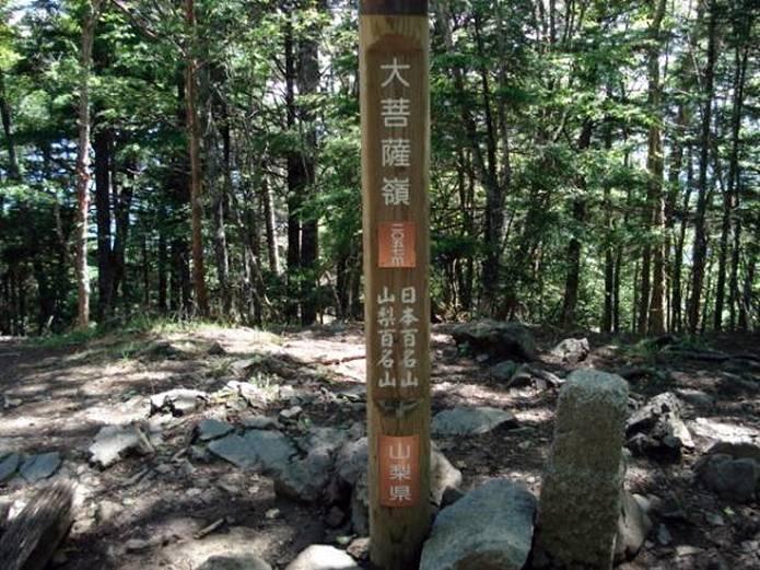 大菩薩嶺 山頂