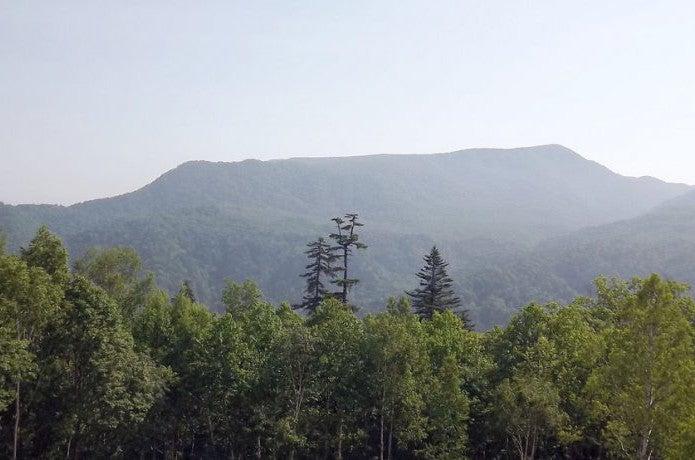 北海道で登山ができる札幌岳