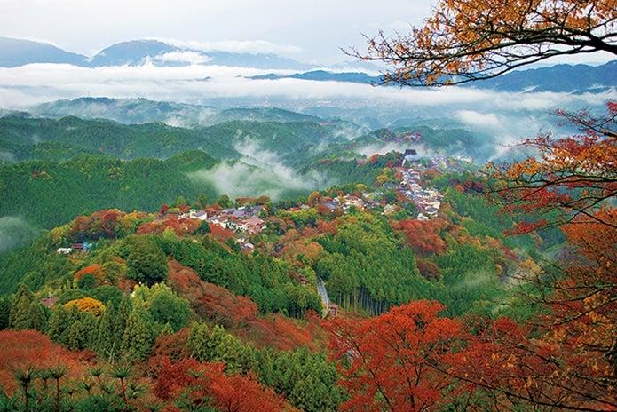 秋の吉野山