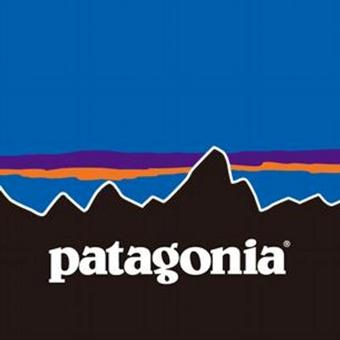 メンズのおしゃれインナーダウンで有名なパタゴニア