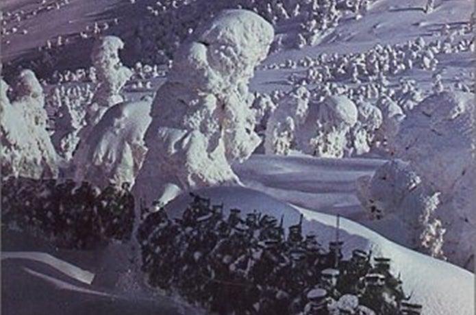 冬の八甲田山を行軍する
