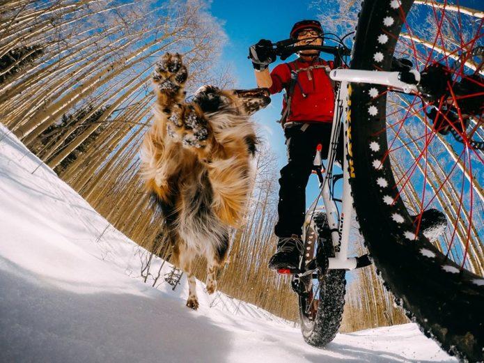ゴープロアクセサリーをつけて犬と走る男性