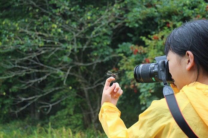カメラで撮影を行う人