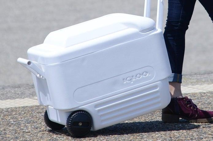 イグルーのクーラーボックスを運ぶ人
