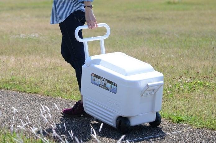 イグルーのクーラーボックスを運んでいる人
