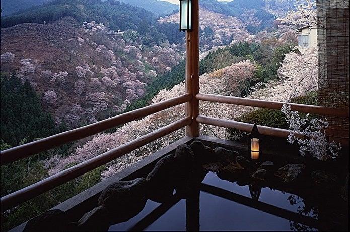 吉野山の日帰り温泉の写真