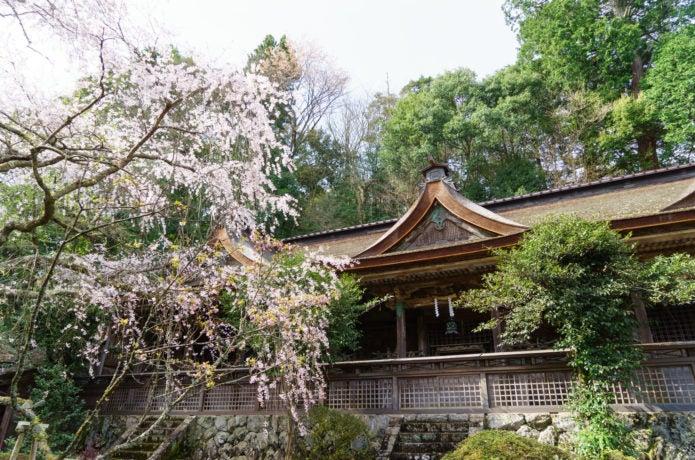 吉野山吉野水分神社の写真