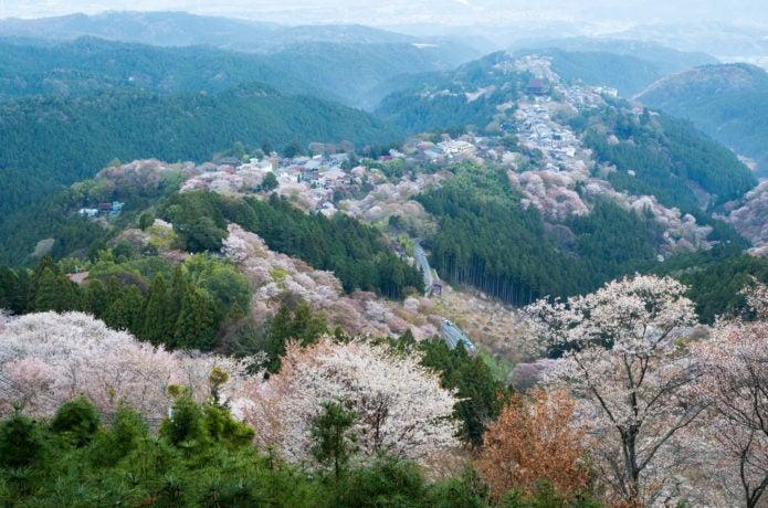 吉野山の花矢倉展望台からの写真