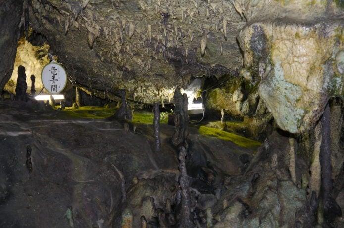 日原鍾乳洞の鍾乳石