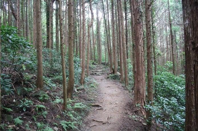 筑波山迎場コース
