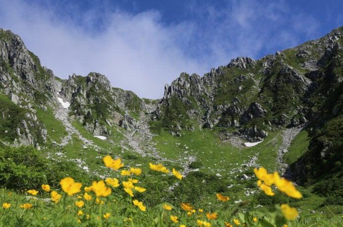 甲斐駒ヶ岳のお花畑