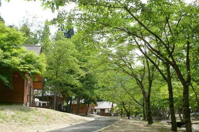 宮城県不動尊公園キャンプ場の画像