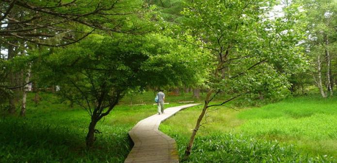 御泉水自然園の画像