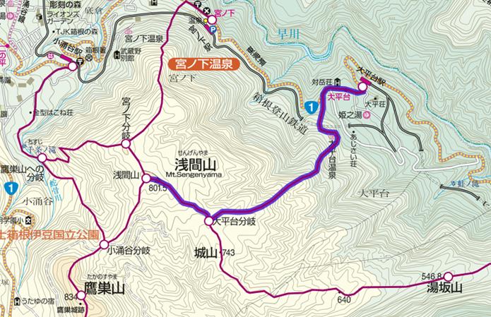 大平台駅コースの画像