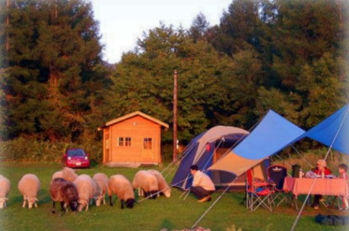 星に手のとどく丘キャンプ場