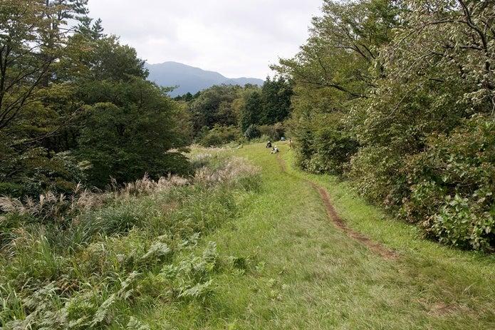 箱根浅間山のハイキングコースの画像