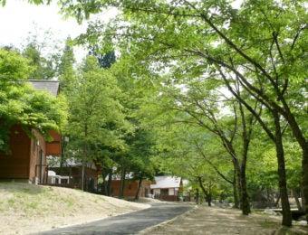 宮城県のキャンプ場の画像