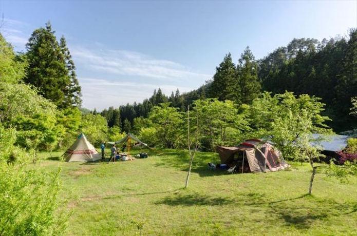 宮城県登米森林公園の画像