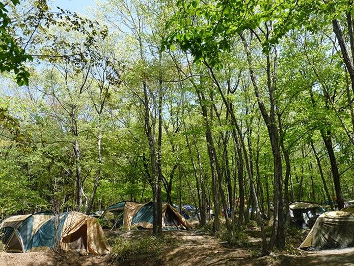 赤城山オートキャンプ場の画像