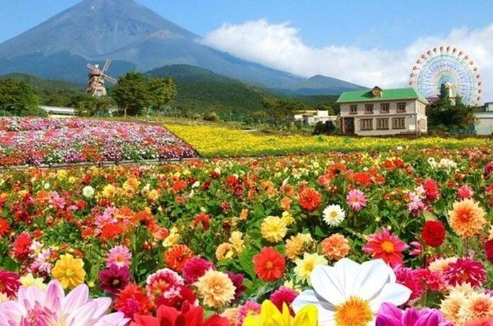静岡県キャンピカ富士ぐりんぱ