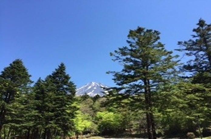 静岡県表富士グリーンキャンプ場の画像