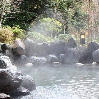箱根ホテル小涌園の画像