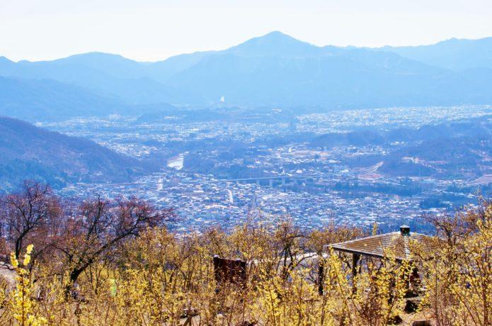 宝登山からの眺めの画像