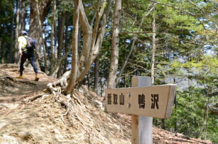 雲取山の登山道