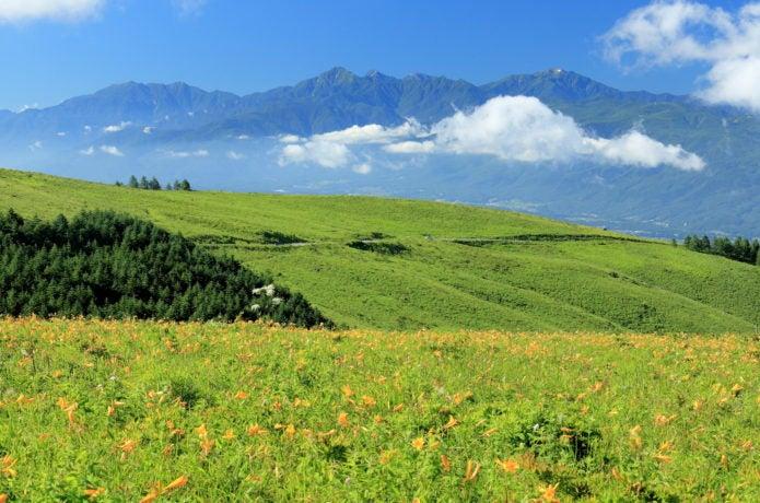 霧ヶ峰高原の画像