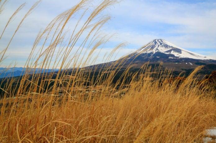 秋の越前岳