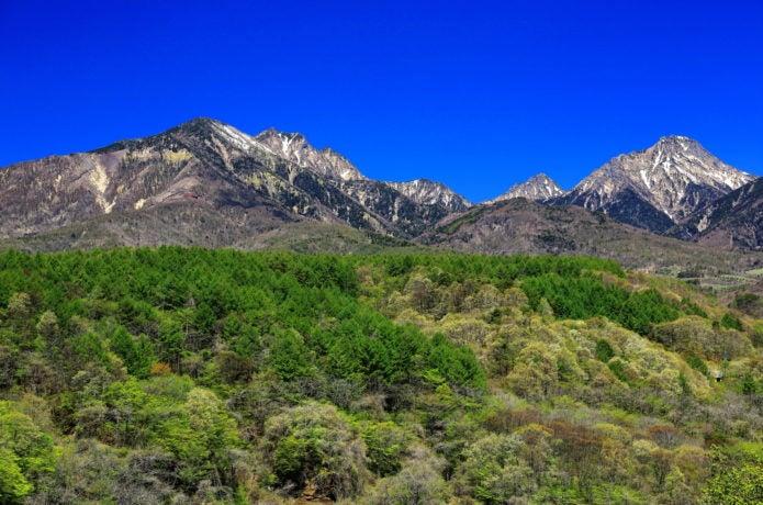 美し森から見た八ヶ岳の画像