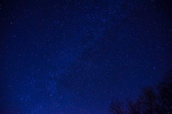 美し森から見れる星空の画像