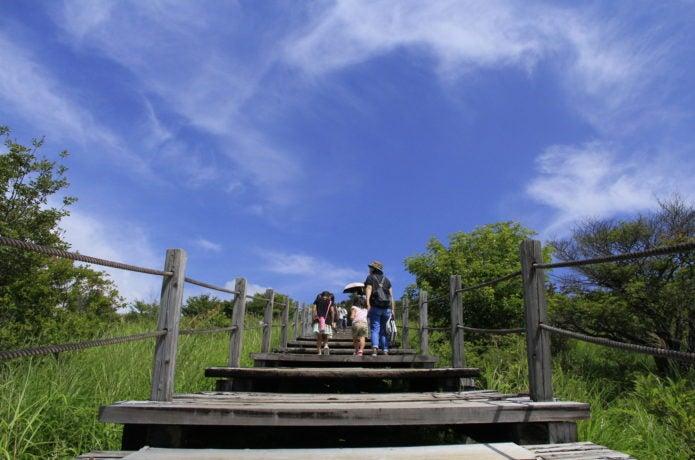 美し森展望台への階段の画像