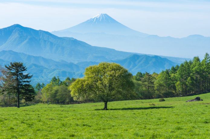 八ヶ岳牧場から見られる富士山