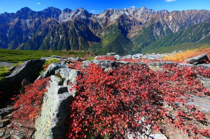 蝶ヶ岳稜線から見た槍・穂高連峰