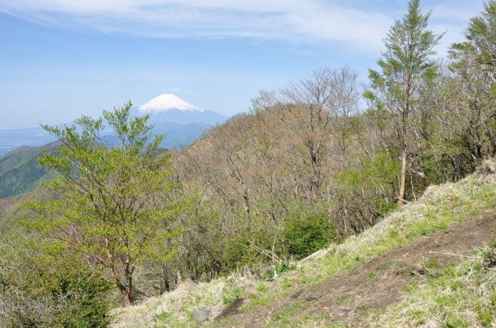 小丸尾根から見る富士山