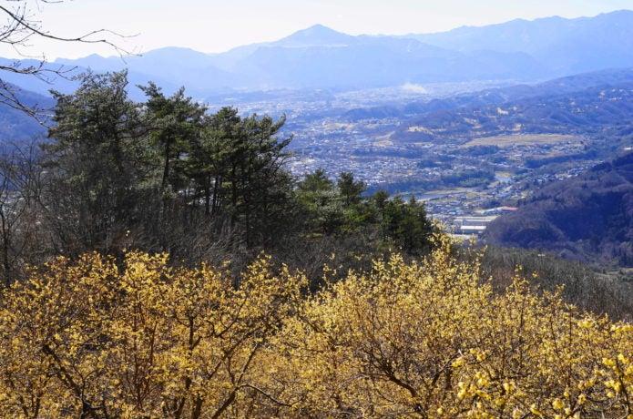宝登山山頂からの景色