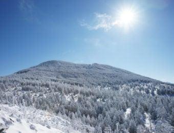 冬の縞枯山の画像