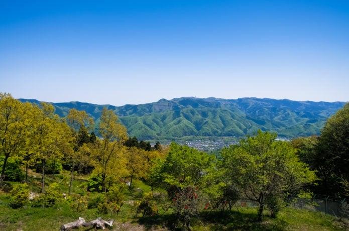 宝登山山頂からの眺め