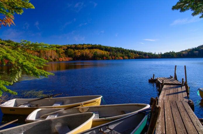 白駒池の紅葉撮影スポット画像