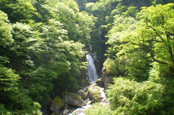 尾白川渓流の不動滝の画像