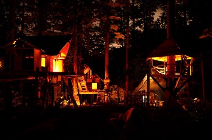 夜の千年の森自然学校