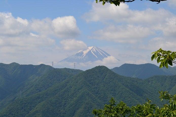 笹子雁ヶ腹摺山からの富士山