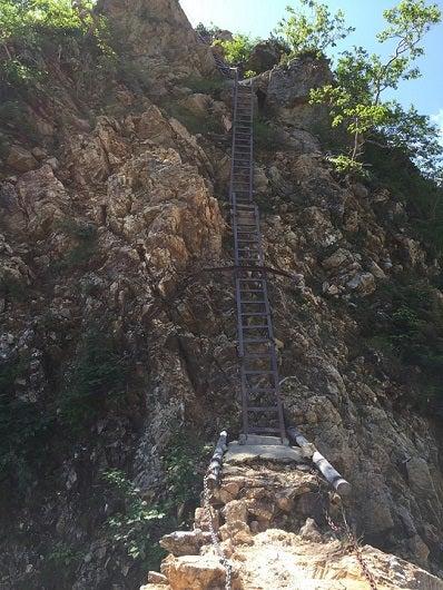 はしごの道