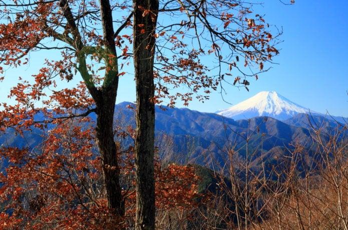 中央線梁川駅から行ける倉岳山の紅葉