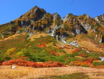 長野県千畳敷カールの紅葉