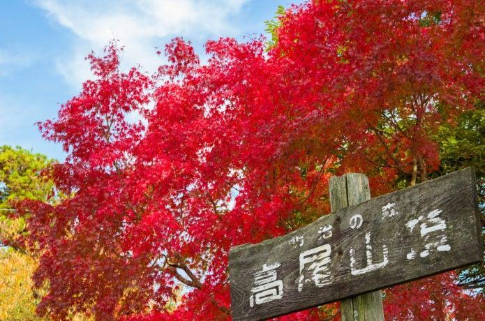 中央線高尾駅から行ける高尾山の紅葉