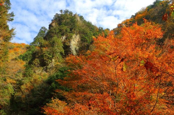 秋川渓谷の紅葉