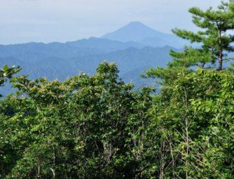 生藤山よりより望む富士山