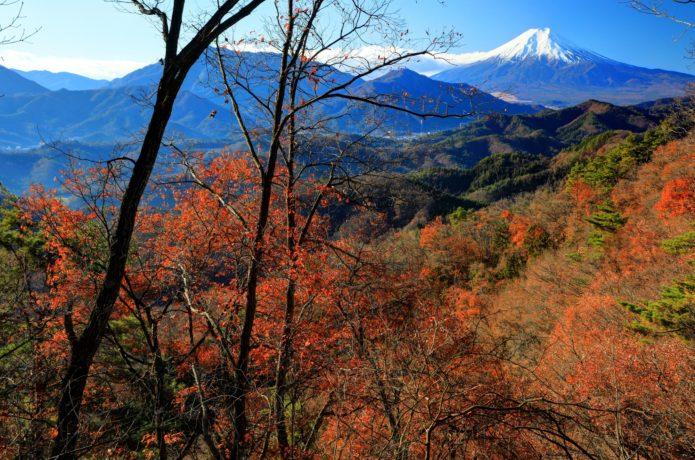 中央線の初狩駅から行ける高川山の紅葉